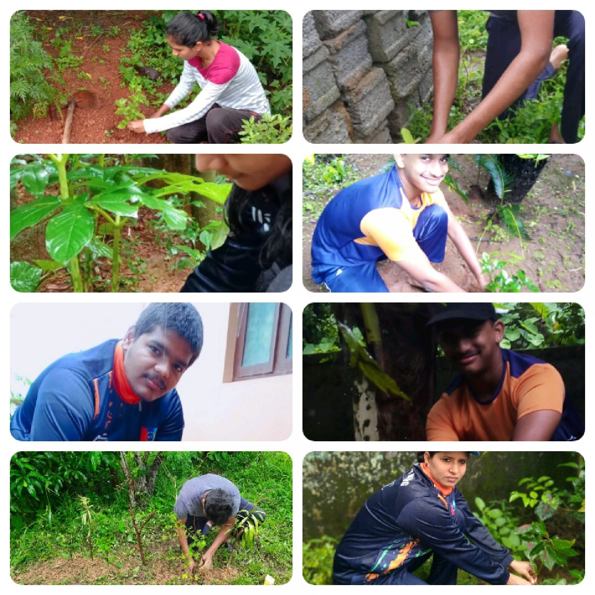 Tree Plantation -2021